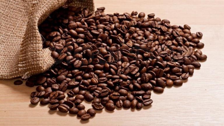 Od sirove kafe do soljice espressa
